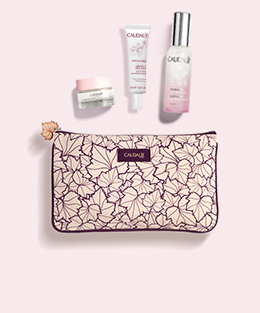 FREE 4-Piece Gift with orders $165+